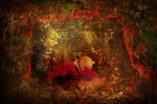 http://design-ka.cowblog.fr/images/20075923116734.jpg